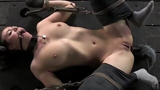 Kitten play in bondage mittens tied down - duration 5:00